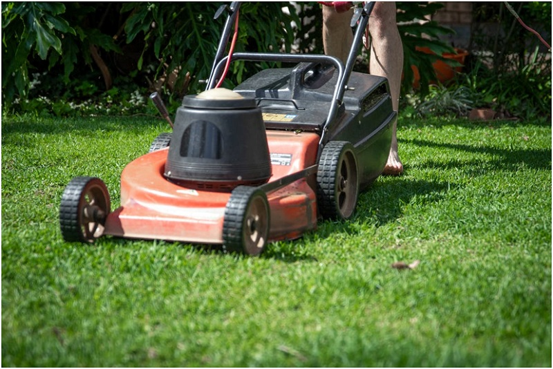 Is it a good idea to hire a lawn care service